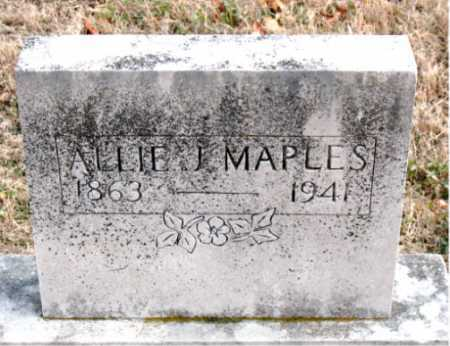 MAPLES, ALLIE J - Carroll County, Arkansas | ALLIE J MAPLES - Arkansas Gravestone Photos