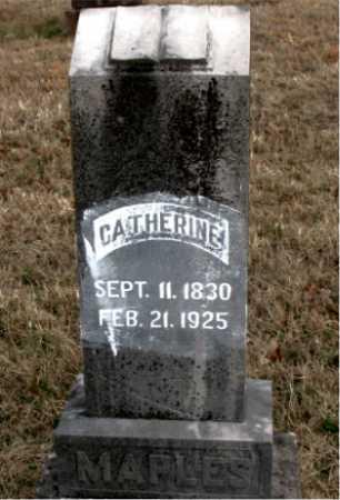 MAPLES, CATHERINE - Carroll County, Arkansas | CATHERINE MAPLES - Arkansas Gravestone Photos