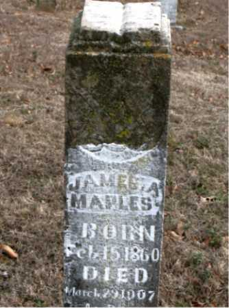 MAPLES, JAMES A. - Carroll County, Arkansas | JAMES A. MAPLES - Arkansas Gravestone Photos
