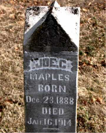 MAPLES, JOE C. - Carroll County, Arkansas | JOE C. MAPLES - Arkansas Gravestone Photos