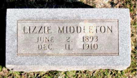 MIDDLETON, LIZZIE - Carroll County, Arkansas | LIZZIE MIDDLETON - Arkansas Gravestone Photos