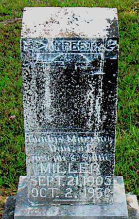 MILLER, GLADYS  M - Carroll County, Arkansas | GLADYS  M MILLER - Arkansas Gravestone Photos