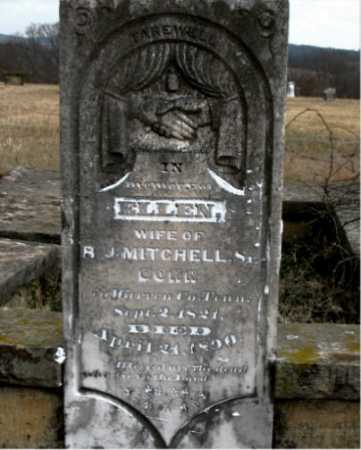 MITCHELL, ELLEN - Carroll County, Arkansas | ELLEN MITCHELL - Arkansas Gravestone Photos