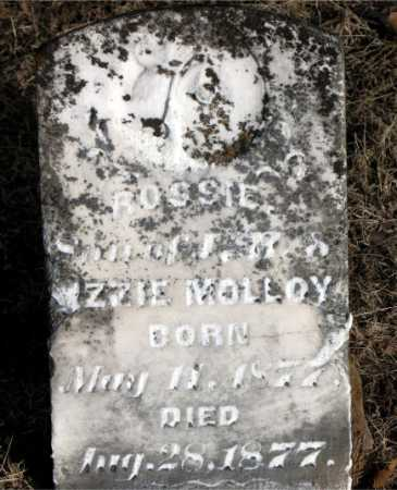 MOLLOY, ROSSIE - Carroll County, Arkansas | ROSSIE MOLLOY - Arkansas Gravestone Photos