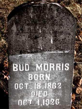 MORRIS, BUD - Carroll County, Arkansas | BUD MORRIS - Arkansas Gravestone Photos