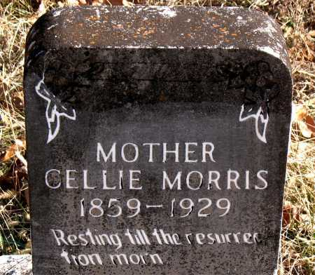 MORRIS, CELLIE - Carroll County, Arkansas | CELLIE MORRIS - Arkansas Gravestone Photos
