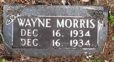 MORRIS, WAYNE - Carroll County, Arkansas | WAYNE MORRIS - Arkansas Gravestone Photos