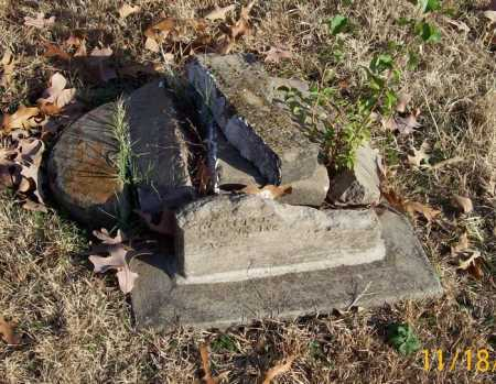 MORTIMER, MARY - Carroll County, Arkansas | MARY MORTIMER - Arkansas Gravestone Photos