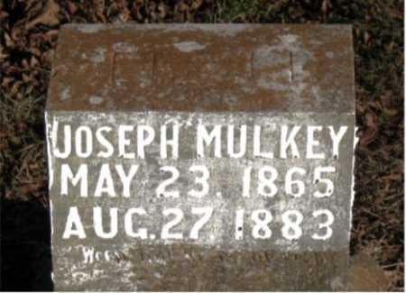 MULKEY, JOSEPH - Carroll County, Arkansas | JOSEPH MULKEY - Arkansas Gravestone Photos