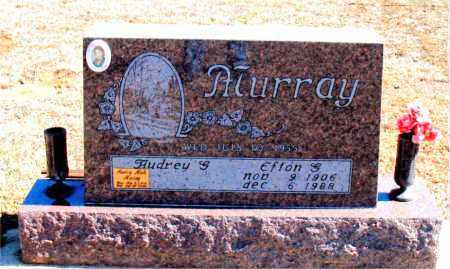 MURRAY, EFTON G. - Carroll County, Arkansas | EFTON G. MURRAY - Arkansas Gravestone Photos