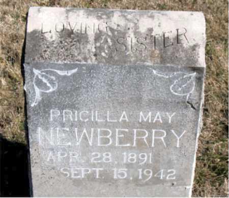 NEWBERRY, PRICILLA MAY - Carroll County, Arkansas | PRICILLA MAY NEWBERRY - Arkansas Gravestone Photos