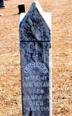 NEWMAN, LUCINDA - Carroll County, Arkansas   LUCINDA NEWMAN - Arkansas Gravestone Photos