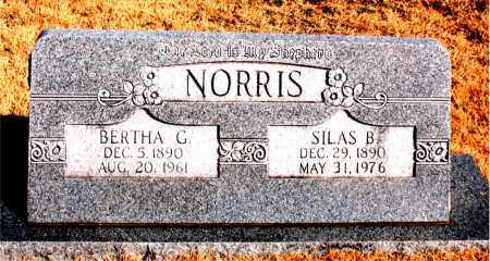 NORRIS, SILAS B - Carroll County, Arkansas | SILAS B NORRIS - Arkansas Gravestone Photos