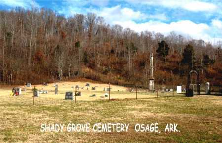 *SHADY GROVE OVERVIEW,  - Carroll County, Arkansas |  *SHADY GROVE OVERVIEW - Arkansas Gravestone Photos