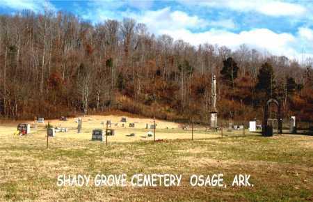 *SHADY GROVE OVERVIEW,  - Carroll County, Arkansas    *SHADY GROVE OVERVIEW - Arkansas Gravestone Photos