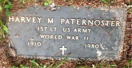 PATERNOSTER (VETERAN WWII), HARVEY M - Carroll County, Arkansas | HARVEY M PATERNOSTER (VETERAN WWII) - Arkansas Gravestone Photos