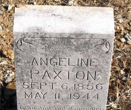 PAXTON, ANGELINE - Carroll County, Arkansas | ANGELINE PAXTON - Arkansas Gravestone Photos
