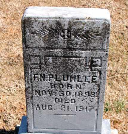 PLUMLEE, F. N. - Carroll County, Arkansas | F. N. PLUMLEE - Arkansas Gravestone Photos
