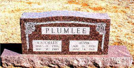 PLUMLEE, ALVIN - Carroll County, Arkansas | ALVIN PLUMLEE - Arkansas Gravestone Photos