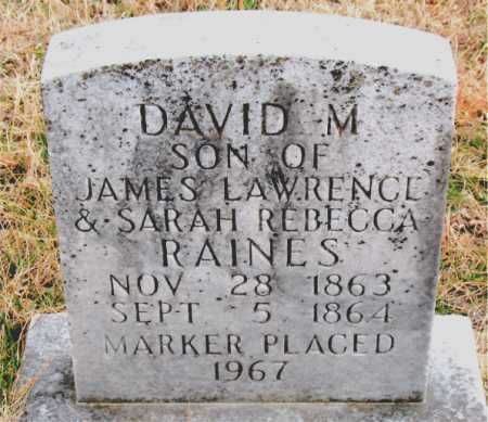 RAINES, DAVID M. - Carroll County, Arkansas | DAVID M. RAINES - Arkansas Gravestone Photos