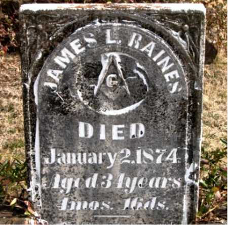 RAINES, JAMES  L. - Carroll County, Arkansas | JAMES  L. RAINES - Arkansas Gravestone Photos