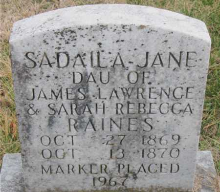 RAINES, SADAILA JANE - Carroll County, Arkansas | SADAILA JANE RAINES - Arkansas Gravestone Photos
