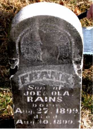 RAINS, FRANK - Carroll County, Arkansas | FRANK RAINS - Arkansas Gravestone Photos