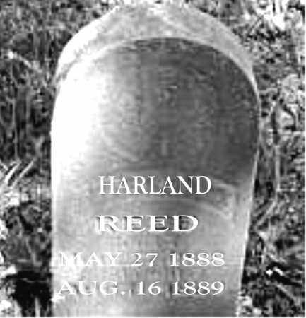REED, HARLAND - Carroll County, Arkansas | HARLAND REED - Arkansas Gravestone Photos