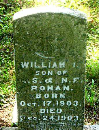 ROMAN, WILLIAM I - Carroll County, Arkansas | WILLIAM I ROMAN - Arkansas Gravestone Photos