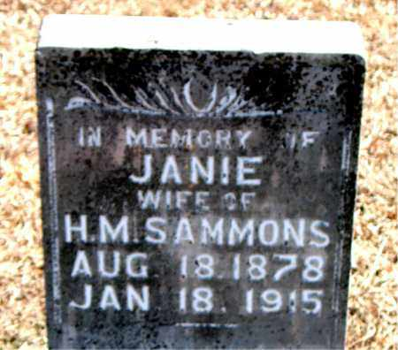 SAMMONS, JANIE - Carroll County, Arkansas | JANIE SAMMONS - Arkansas Gravestone Photos