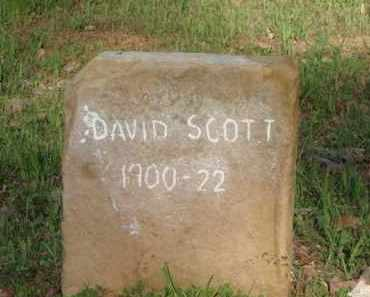 SCOTT, DAVID - Carroll County, Arkansas   DAVID SCOTT - Arkansas Gravestone Photos