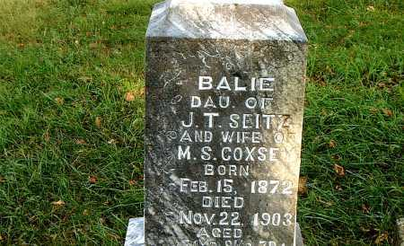 SEITZ, BALIE - Carroll County, Arkansas | BALIE SEITZ - Arkansas Gravestone Photos
