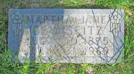 SEITZ, MARTHA JANE - Carroll County, Arkansas | MARTHA JANE SEITZ - Arkansas Gravestone Photos