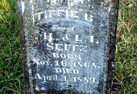 SEITZ, TIFFIE B. - Carroll County, Arkansas | TIFFIE B. SEITZ - Arkansas Gravestone Photos
