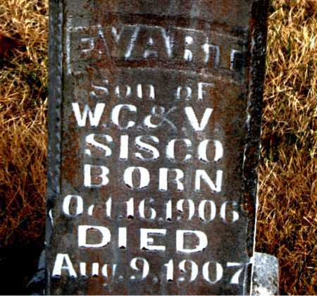 SISCO, EVART - Carroll County, Arkansas | EVART SISCO - Arkansas Gravestone Photos