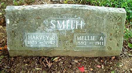 SMITH, MELLIE - Carroll County, Arkansas | MELLIE SMITH - Arkansas Gravestone Photos