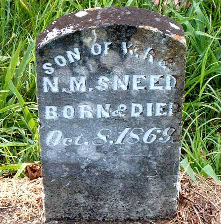 SNEED, INFANT SON - Carroll County, Arkansas | INFANT SON SNEED - Arkansas Gravestone Photos