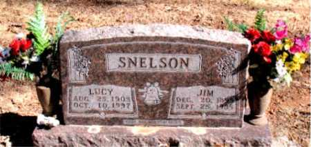 SNELSON, JIM - Carroll County, Arkansas | JIM SNELSON - Arkansas Gravestone Photos