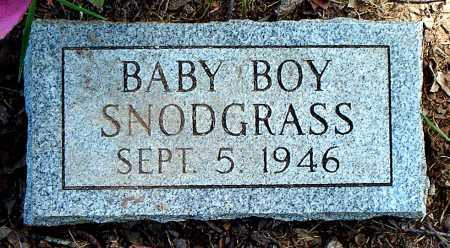 SNODGRASS, INFANT SON - Carroll County, Arkansas | INFANT SON SNODGRASS - Arkansas Gravestone Photos