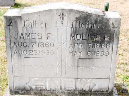 SNOW, JAMES P. - Carroll County, Arkansas | JAMES P. SNOW - Arkansas Gravestone Photos