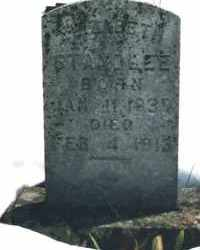 WILLIAMS STANDLEE, ELIZABETH - Carroll County, Arkansas | ELIZABETH WILLIAMS STANDLEE - Arkansas Gravestone Photos