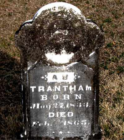 TRANTHAM, A B - Carroll County, Arkansas | A B TRANTHAM - Arkansas Gravestone Photos