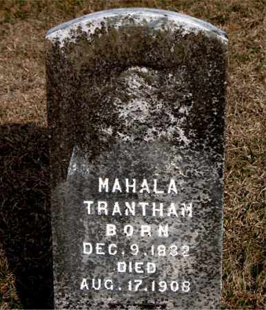 TRANTHAM, MAHALA - Carroll County, Arkansas | MAHALA TRANTHAM - Arkansas Gravestone Photos