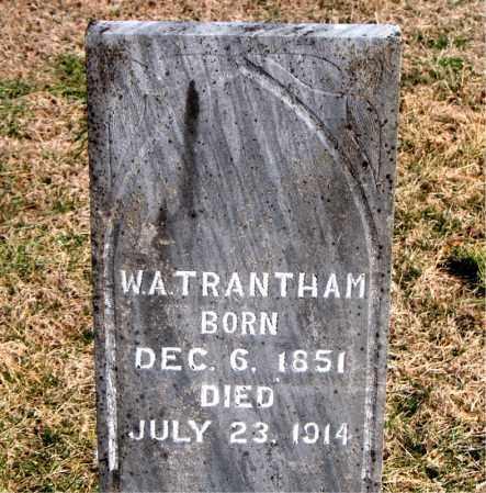 TRANTHAM, W A - Carroll County, Arkansas | W A TRANTHAM - Arkansas Gravestone Photos