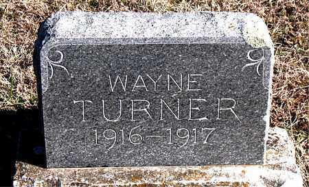 TURNER, WAYNE - Carroll County, Arkansas | WAYNE TURNER - Arkansas Gravestone Photos