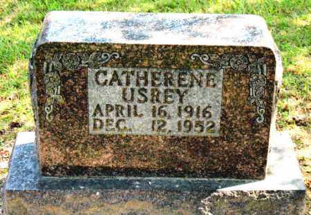 USREY, CATHERINE - Carroll County, Arkansas | CATHERINE USREY - Arkansas Gravestone Photos