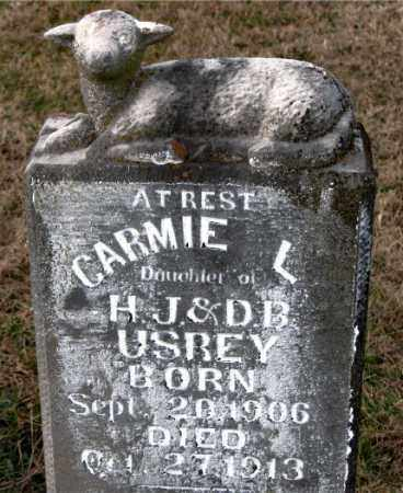 USREY, CARMIE L. - Carroll County, Arkansas | CARMIE L. USREY - Arkansas Gravestone Photos