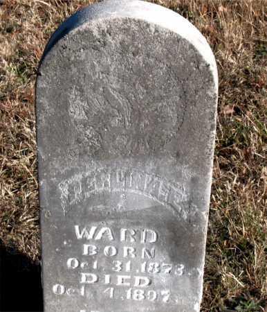 WARD, PERLINA E. - Carroll County, Arkansas | PERLINA E. WARD - Arkansas Gravestone Photos