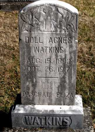 WATKINS, DOLL AGNES - Carroll County, Arkansas | DOLL AGNES WATKINS - Arkansas Gravestone Photos