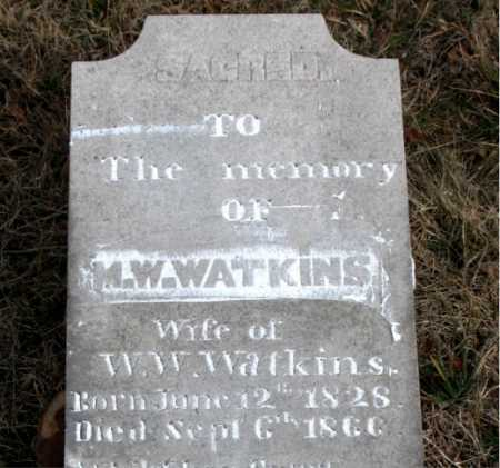 WATKINS, ELMYRA - Carroll County, Arkansas | ELMYRA WATKINS - Arkansas Gravestone Photos